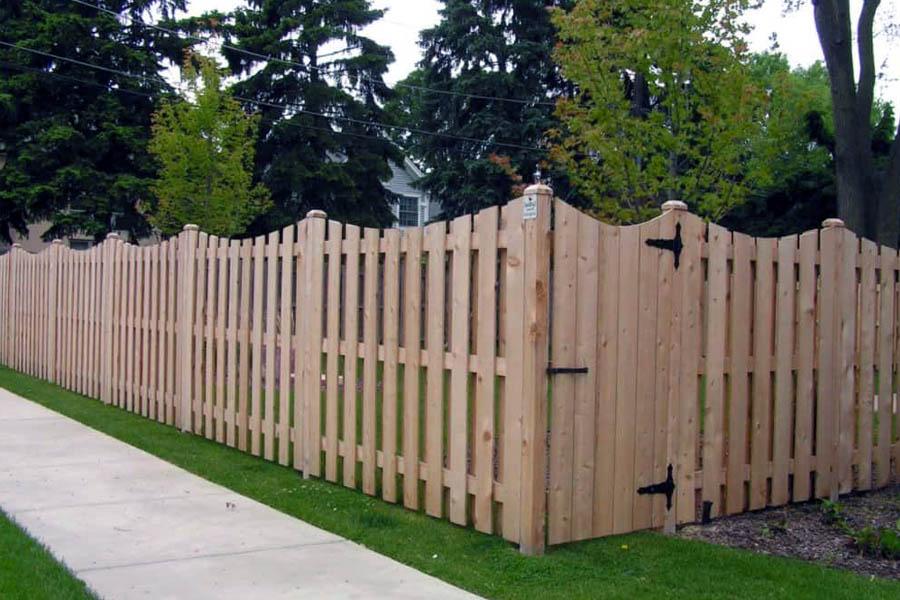 забор из дерева фото для дачи имеет дикий